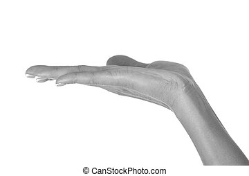 Closeup shot of female hand isolated on white background