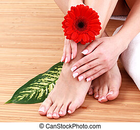 Closeup shot of female legs and hands with clean and soft skin. Skincare concept