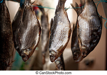 Closeup shot of salted bass drying on stick - Closeup photo...
