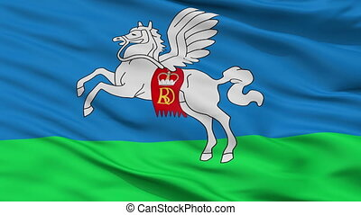 Closeup Slucak city flag, Belarus - Slucak closeup flag,...