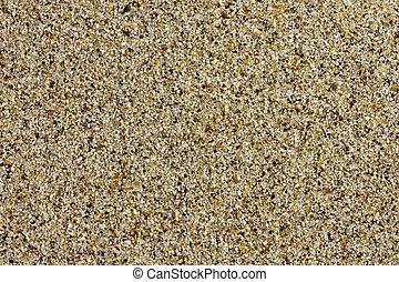 closeup, spiaggia sabbia