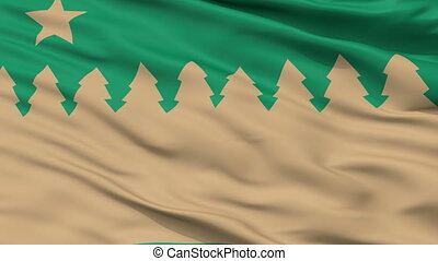 Closeup Sudbury city flag, Canada - Sudbury closeup flag,...