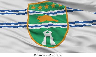 Closeup Surrey city flag, Canada - Surrey closeup flag, city...