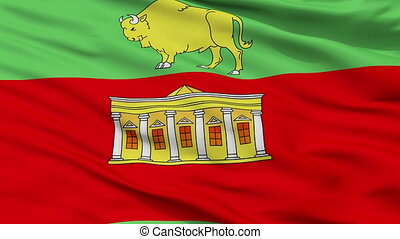 Closeup Svislac city flag, Belarus - Svislac closeup flag,...