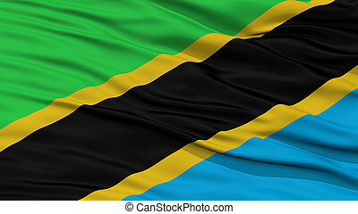 Closeup Tanzania Flag