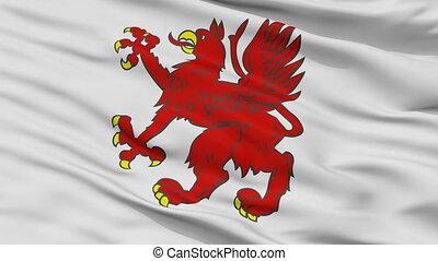 Closeup Tczew city flag, Poland - Tczew closeup flag, city...