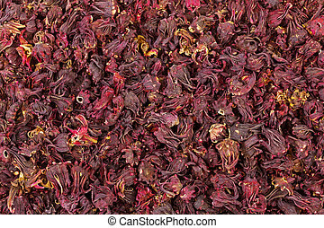 Closeup texture of dried Roselle hibiscus flowers in dark...