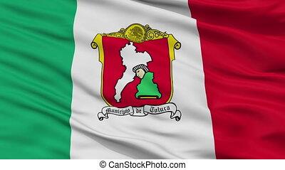 Closeup Toluca city flag, Mexico - Toluca closeup flag, city...