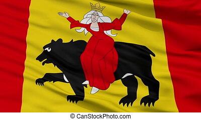 Closeup Tomaszow Mazowiecki city flag, Poland - Tomaszow...