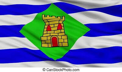Closeup Vieques city flag, Puerto Rico - Vieques closeup...