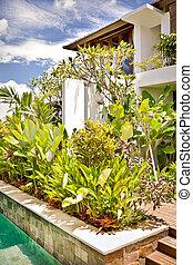 Closeup view of a green plant garden