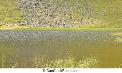 Closeup view of mountain lake in late August - Glittering...