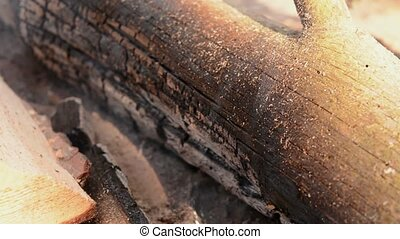 Closeup view of wood in wildfire with smoke. Dangerous of ...