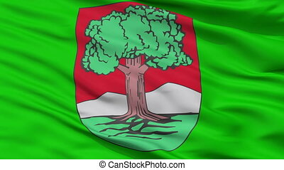 Closeup Walbrzych city flag, Poland - Walbrzych closeup...