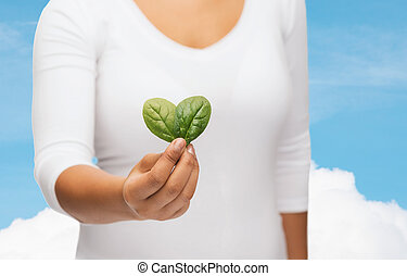 closeup woman hand with green sprout - nature and plant...