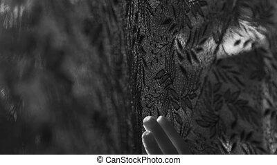 Closeup woman's hand on black lace curtain - Closeup woman's...
