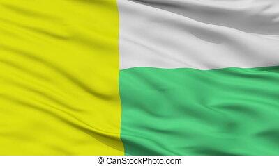Closeup Zielona Gora city flag, Poland - Zielona Gora...