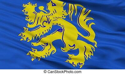 Closeup Zottegem city flag, Belgium - Zottegem closeup flag,...