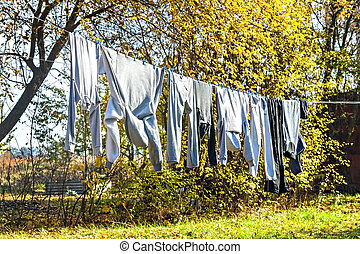Clothes drying on a rope between trees in the autumn