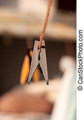 clothes-peg gray