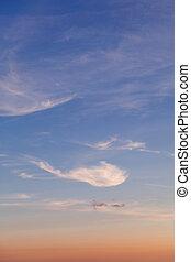 Cloud background vertical