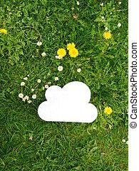 cloud meadow dandelion