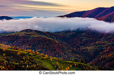 cloud on the hill with colorful foliage at dawn. sublime...