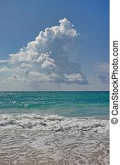 Dover Beach, Barbados. Sept.