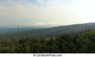 Cloud time lapse with dead trees, distant hill and fog from Tristolicnik. Sumava National Park and Bavarian Forest, Czech republic and Germany