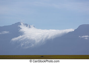 Gran Sabana region, at Canaima National Park, Venezuela