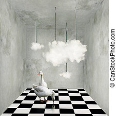 Clouds and ducks in a surreal room - Surrealist room with...