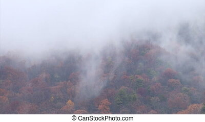 Clouds and fall colors - Time lapse clip of clouds moving...
