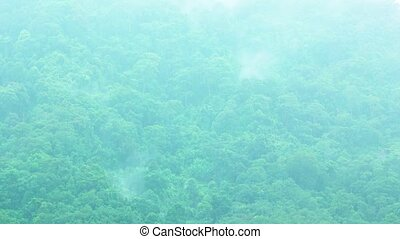Clouds and Fog Evaporating from Jungle in Timelapse - Whisps...