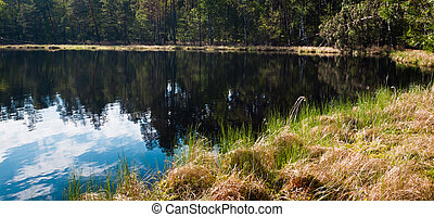 Clouds and forest over Lake at summer