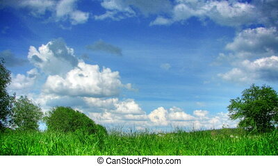 Clouds and grass time lapse