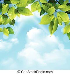 Clouds And Leaves Background - Green leaves tree foliage and...