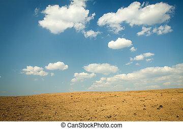 clouds in the desert