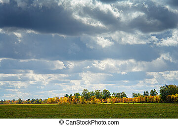 Clouds in the sky over autumn meadow and forest