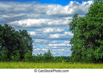 Clouds in the sky over summer meadow and forest