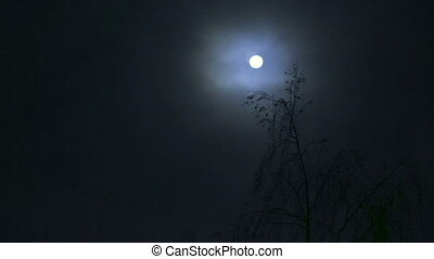 clouds., lune, entiers, nuit