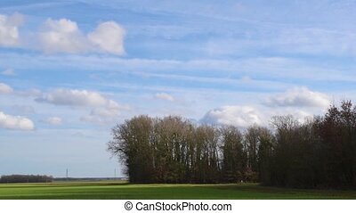 Clouds move in blue sky over green field and forest