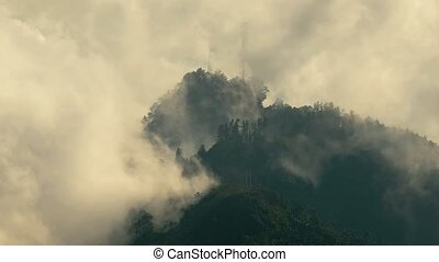 Mountain clouds in the Andes, mist over the forest, Sierra Nevada de Santa Marta, clouds moving in real time