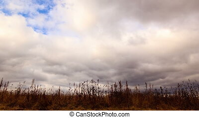 Clouds over dry grass. From bottom to top. Time Lapse. 4K