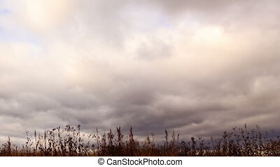 Clouds over dry grass. Panarama. Time Lapse
