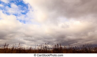 Clouds over dry grass. Time Lapse