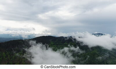 Clouds over rain forest jungle. Aerial view of rainforest. -...