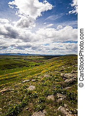 Clouds Over Springtime Landscape