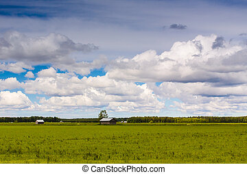 Clouds Over The Summer Fields