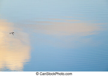 Clouds reflecting in a rippling pond