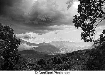 Cloudy landscape trees